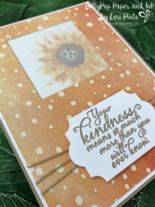 Stampinup!, Painted Harvest Stamp Set, Painted Autumn DSP, Kindness, by Lori Pinto2