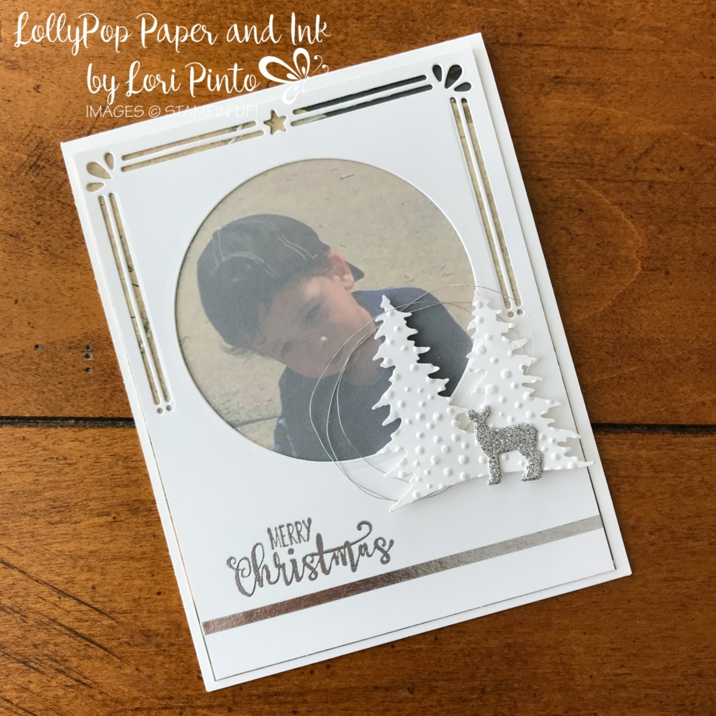 Stampin'Up!, Stampinup! Card Front Builder Framelits Dies, Half Full Stamp Set, Layering Circles Framelits Dies, Silver Photograph Card by Lori Pinto