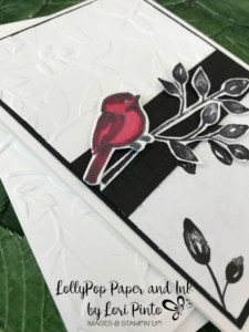 Stampin'Up! Stampinup! Petal Palette Stamp Set and Bundle with Petal Passion DSP with Lori Pinto