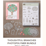 Thoughtful Branches/Beautiful Branches Bundle